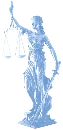 Experiencia de Nuestro Estudio Jurídico
